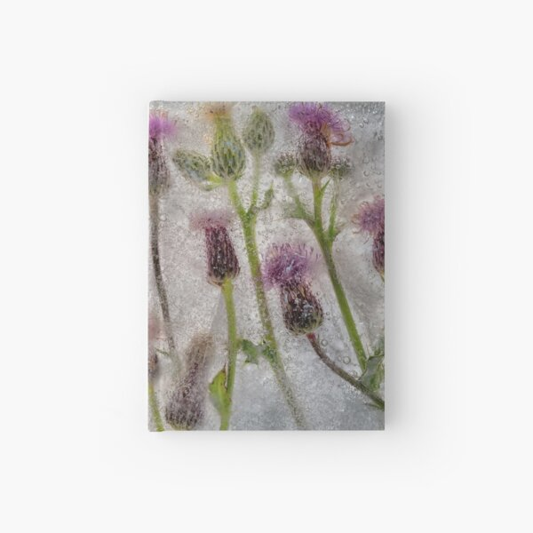 Field of Thistles Hardcover Journal