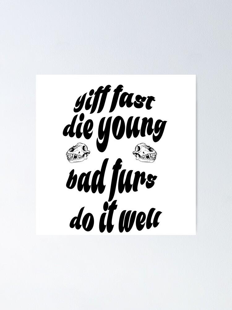 Die Young Vinyl Stickers 3 Ride Hard