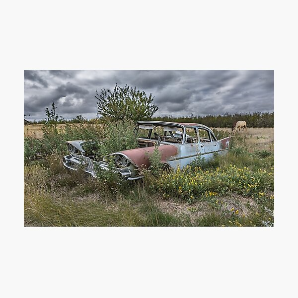Prairie Weeds Photographic Print