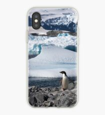 "Adelie Penguin  ~  ""and this is my backyard"" iPhone Case"