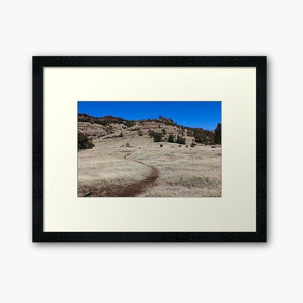 Yahi trail - Upper Bidwell park Chico, CA Framed Art Print