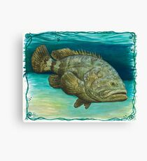 """""""Goliath Grouper"""" by Amber Marine ~ Watercolor painting, art © 2016 Canvas Print"""
