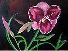 Daylily by Elizabeth Kendall