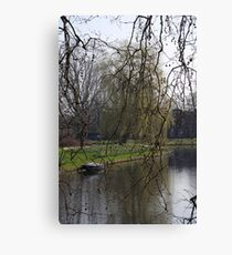 Spring by the canal Canvas Print