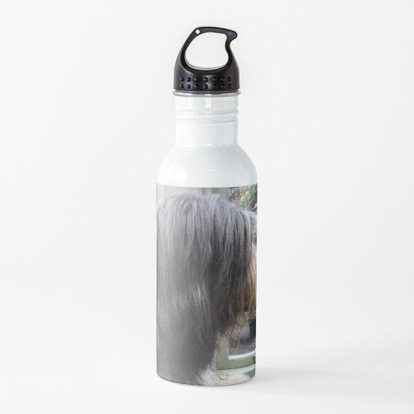 Bearded Collie - Did Somebody Say Walkies to this Beautiful Beardie?! Water Bottle