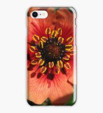 Orange Flower – Macro Close-Up iPhone Case/Skin