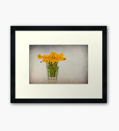 A glass filled with buttercups Framed Print