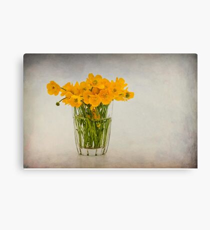 A glass filled with buttercups Canvas Print