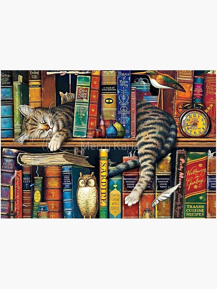 Bookshelf Cat, Library cats by AmimodT