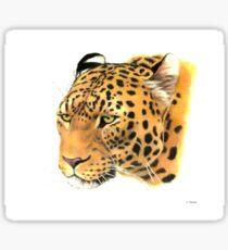 Portrait of a Leopard Sticker