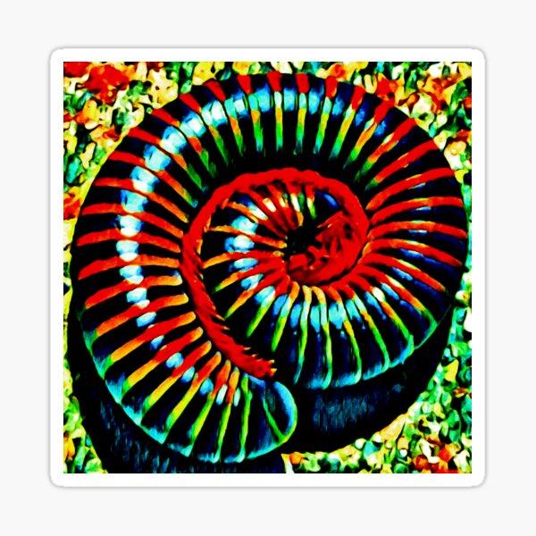 On Fibonacci We Are Built Sticker