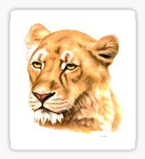 Portrait of a Lioness Sticker