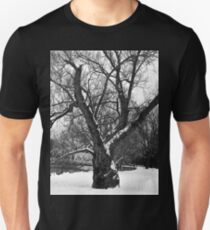Ancient Willow Tree T-Shirt