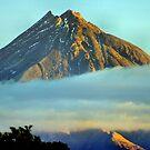 Mt. Egmont in the mist by hans p olsen