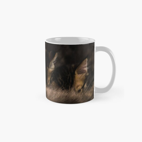 Kittens & mom Classic Mug