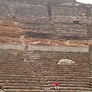 The Seated Spectator At Ephesus Ancient Theatre by taiche