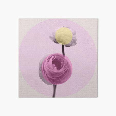 Ranunkel mit Pastell Punkten  Galeriedruck