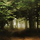 Deep In The Forest by Helmar Designs