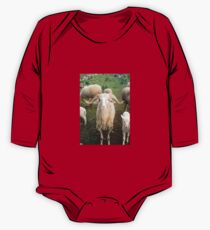 A Flock Of Sheep In A Rural Setting Kids Clothes