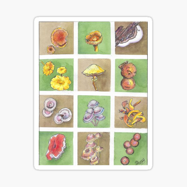A collection of colorful fungi Sticker