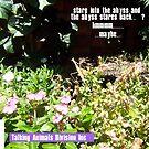 Praying Mantis Two -301215 by robertemerald