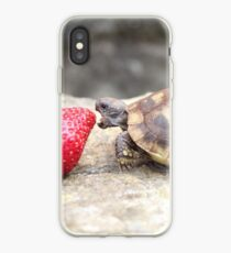 Photograph of a baby turtle eating a strawberry iPhone Case