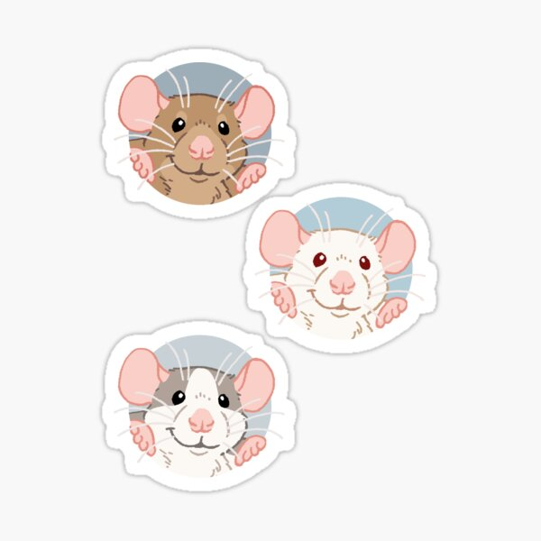 Rat stickers Sticker