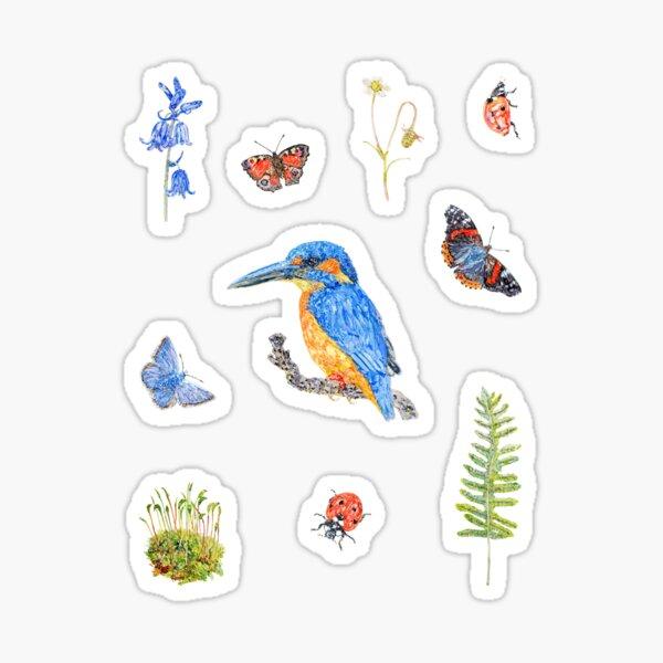 Woodland Stream - White Sticker