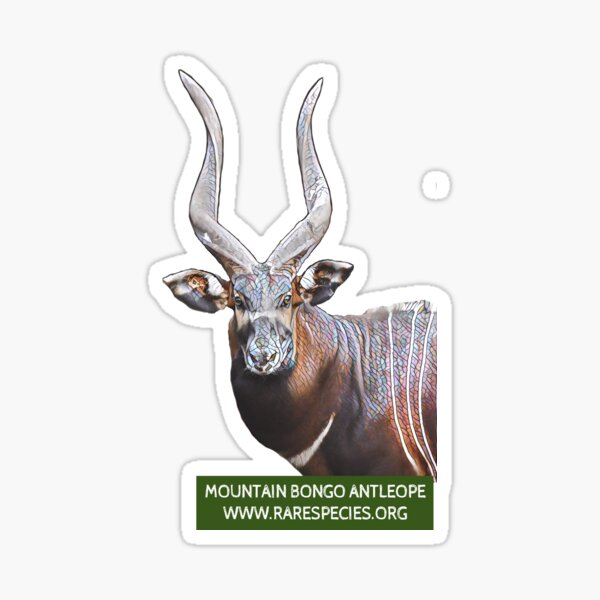 Mountain Bongo Antelope Sticker
