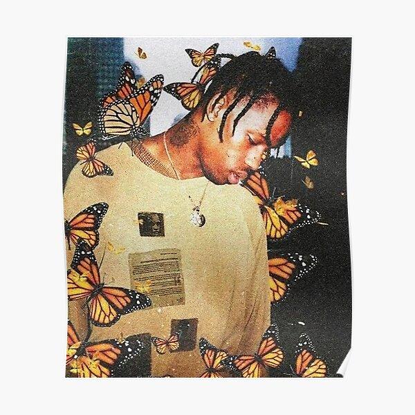 Mariposa más alta en la habitación Póster