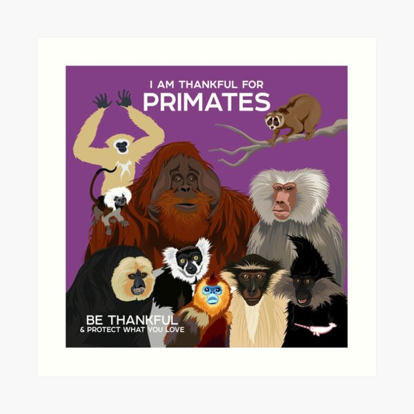 I Am Thankful For Primates Art Print