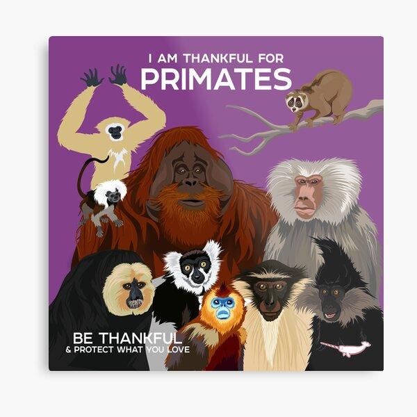 I Am Thankful For Primates Metal Print