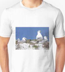 Black-legged Kittiwake T-Shirt