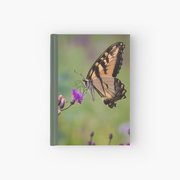 Swallowtail Butterfly Feeding on Tall Ironweed Hardcover Journal