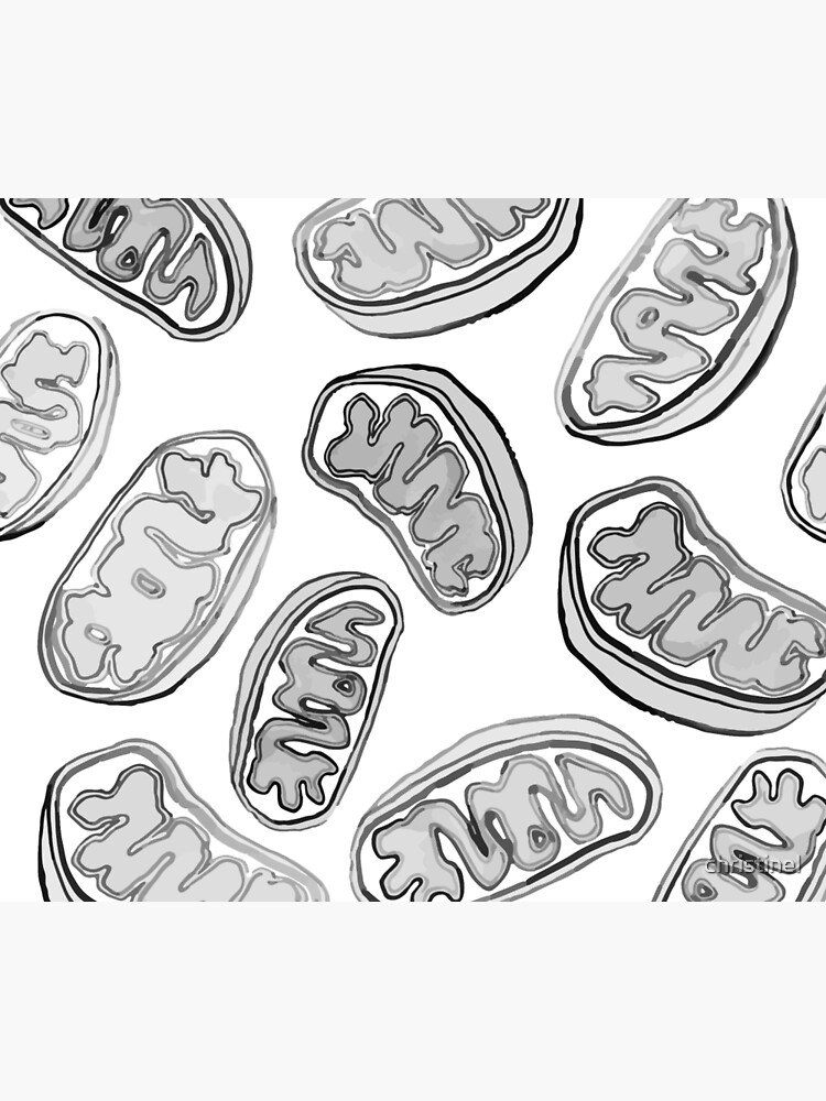 Mitochondria repeating pattern by christinel