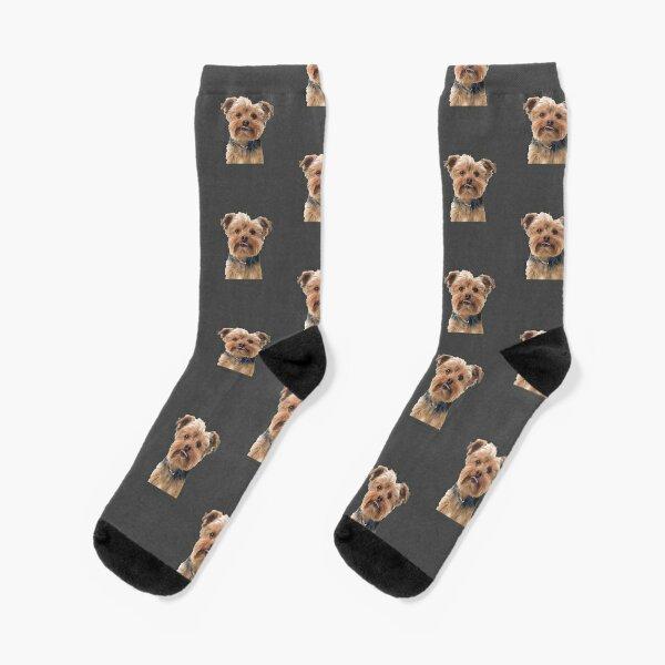 Yorkie Yorkshire Terrier Dog-Socks