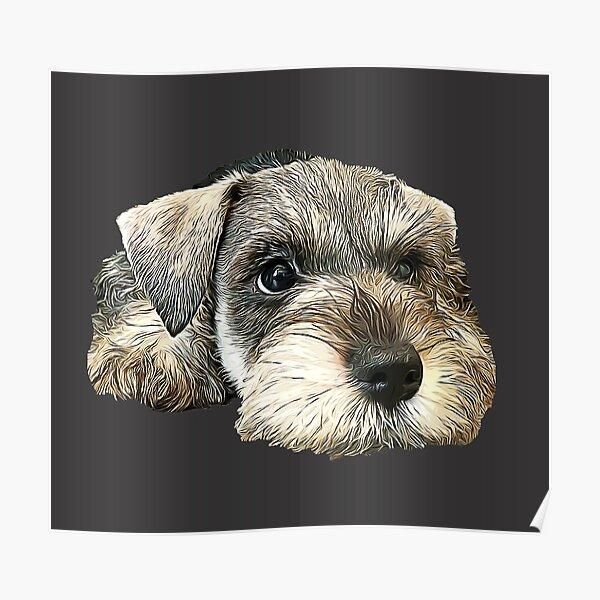 Mini Schnauzer Cute Puppy Dog Poster