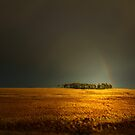 THE LOST RAINBOW by leonie7