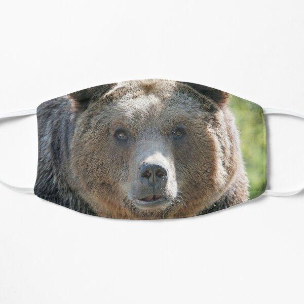 Bear, bear's face, forest bear, terrible bear, bear-to-beard Flat Mask