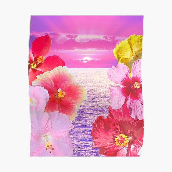 Hibiscus Sunrise Poster