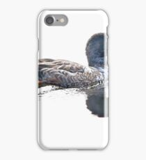 Northern Shoveler iPhone Case/Skin