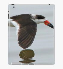 Black Skimmer iPad Case/Skin
