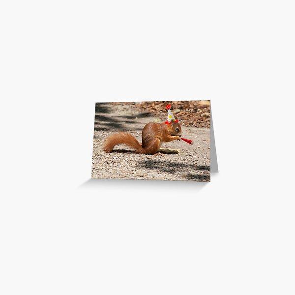 Funny Happy Birthday Squirrel Greeting Card