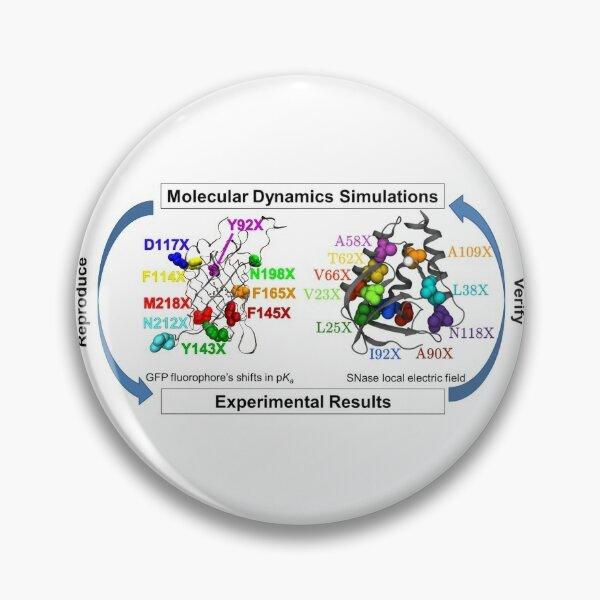 Molecular Dynamics Simulation Pin