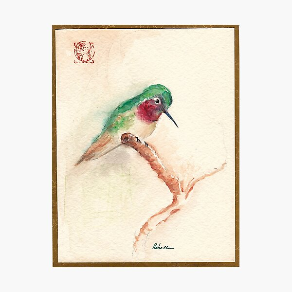 KOTORI - Hummingbird Watercolor Painting by Rebecca Rees Photographic Print