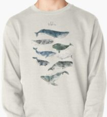 Whales Pullover
