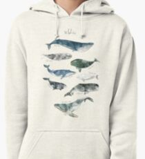 Whales Pullover Hoodie