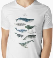Whales Men's V-Neck T-Shirt
