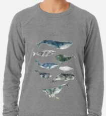 Wale Leichter Pullover