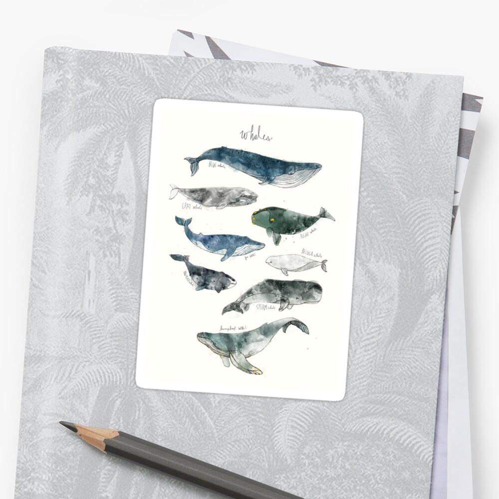 Wale Sticker